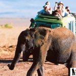 أشياء يجب أن تعرفها قبل السفر و السياحة في افريقيا