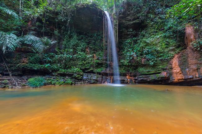 الحدائق الوطنية في ماليزيا